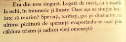 suflet_pierdut_silviu_urdea_recenzie