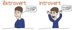 introvertit_vs_extravertit