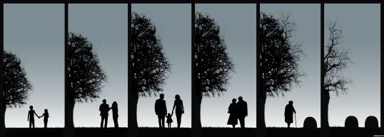 despre_iubire_din_dragoste_pentru_carti_adevarata