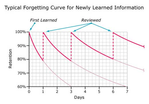 forgetting20curve